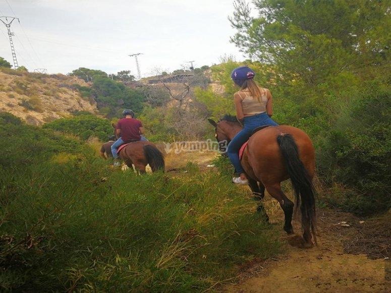 Ruta a caballo en campello alicante