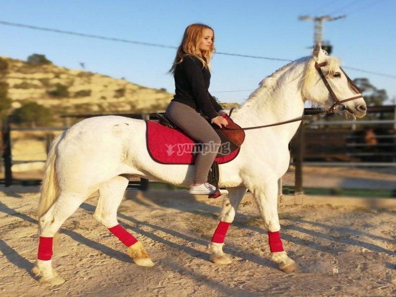 Breve clase de equitación Villajoyosa