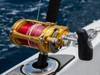 放置钓鱼竿的不同区域