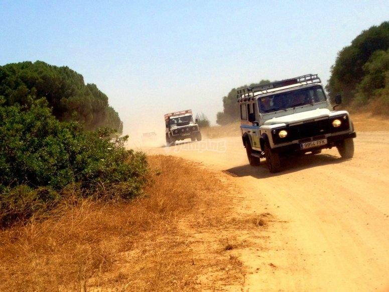 Vieni in buona compagnia e fai uno dei nostri percorsi in jeep Sierra de las Nieves