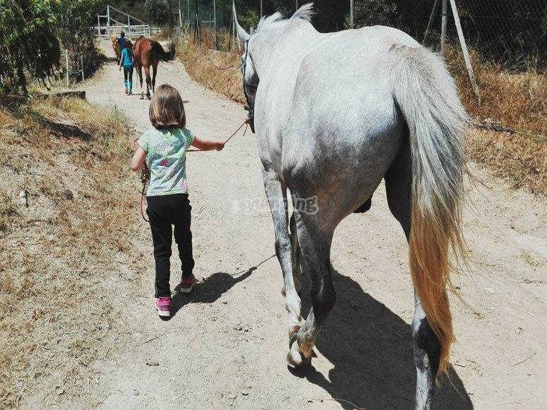 Guardando los caballos