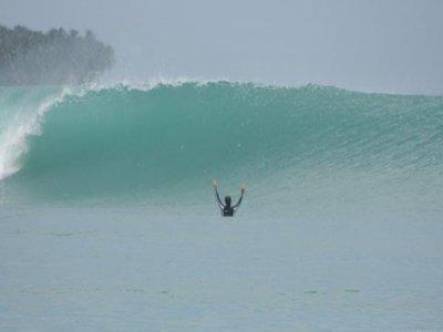 Molecule Surf Campamentos de Surf
