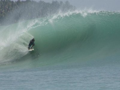 Molecule Surf