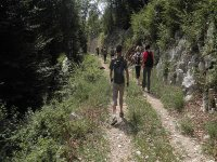 Excursiones de trekking