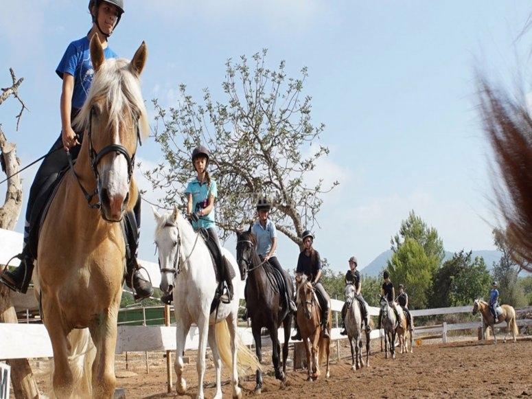 caballos en fila