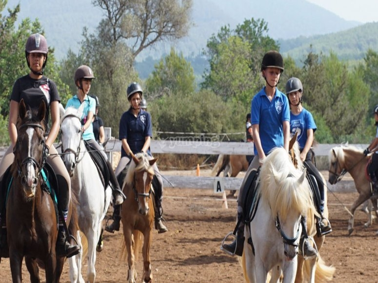 Little ones learning about the equestrian life