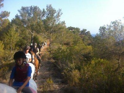 Horse riding Ibiza 1 hour