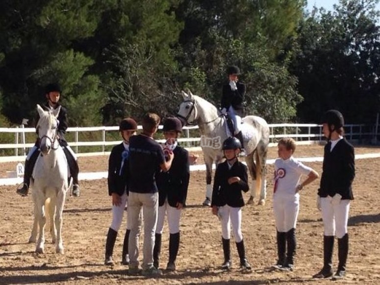 Horse riding classes
