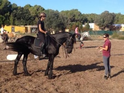 Horse Riding Class Ibiza, 1 hour