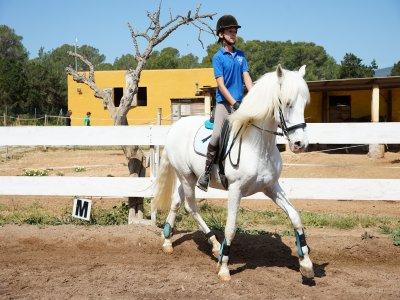 Horse riding class in Ibiza 1 hour