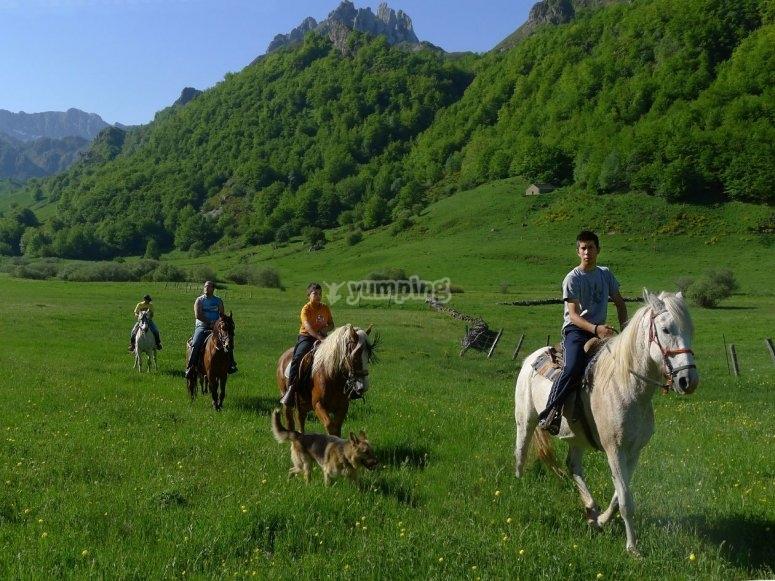 A caballo por el prado verde