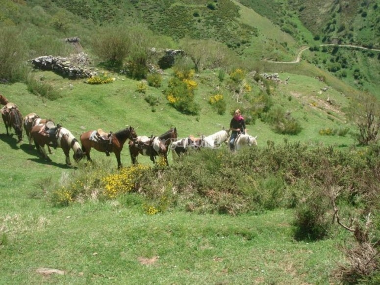 Con los equinos en San Lorenzo