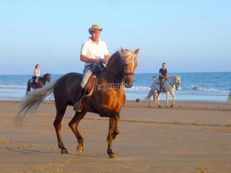 A caballo junto al mar