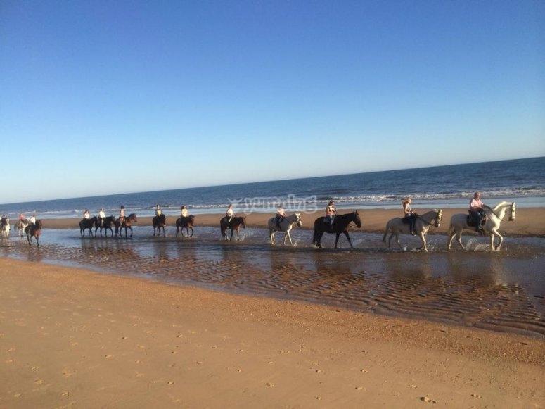 En linea bordeando la playa