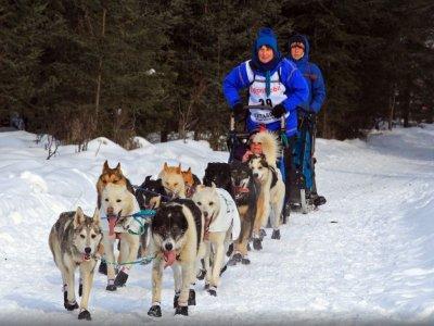 Dog Sledding 3km in Grandvalira for kids