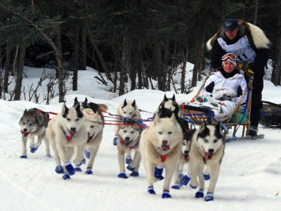 Dog Sledding in Grandvalira, 2km, for Children
