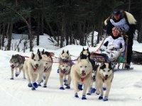 Mushing with dogs in Grandvalira