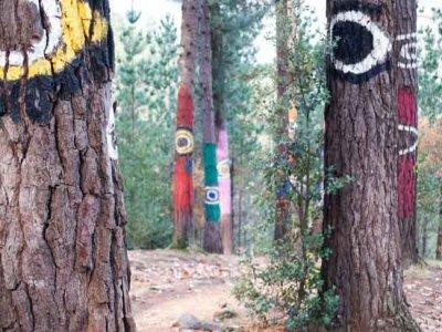Excursión al bosque animado de Oma