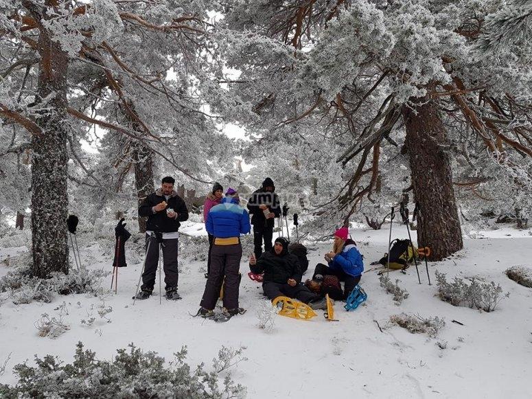 descanso ruta en raquetas de nieve sierra nevada