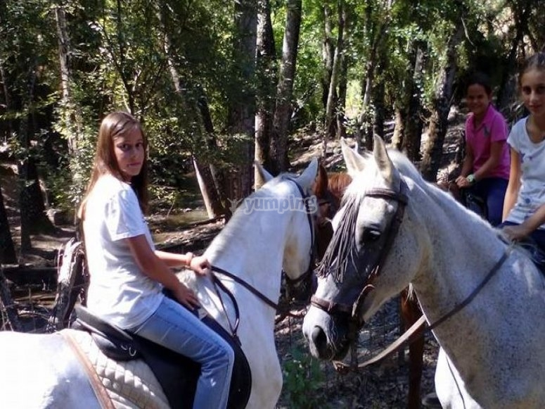 Getaway with horses