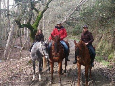 Ruta a caballo por Huelva 1h 30 minutos