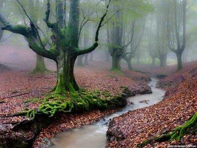 Parco naturale di Gorbea e museo della fattoria basca