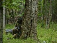 Escondido tras un árbol