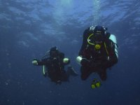 pareja bajo el mar