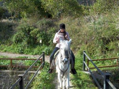Ruta a caballo Granada noche y media pensión 2 PAX