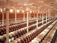 Finca Valpiedra La Rioja导览游