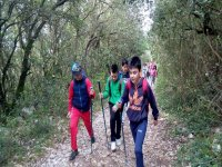 Hiking experience