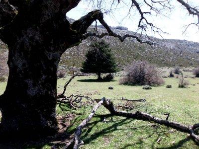 Via ferrata & route Serrania de Ronda weekend