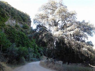 Weekend climbing and via ferrata, Sauceda