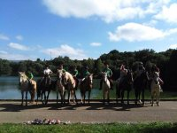 Horses by the water