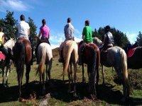 Todos montando a caballo