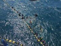 集团乐趣浮潜