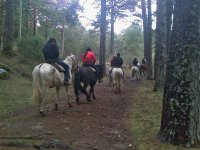 Excursion a caballo