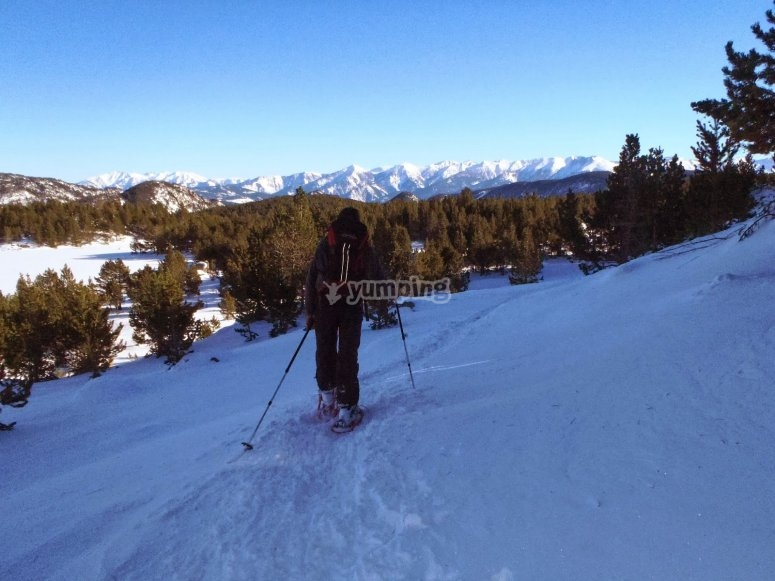have fun with snowshoes