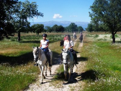 1 hour horse riding in Navalmoral, Cáceres