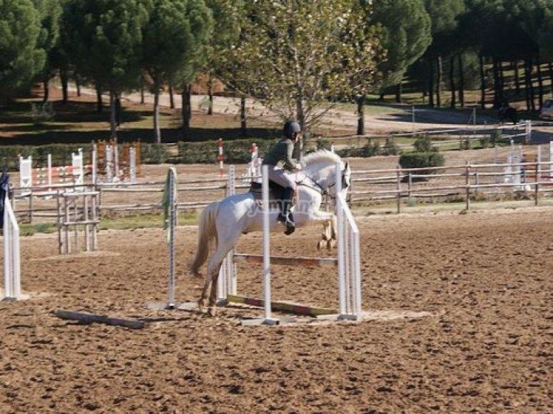 Salto a cavallo
