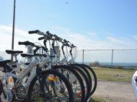 海滩自行车骑自行车