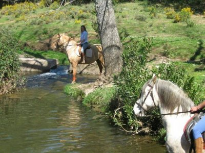 Equestrian route, Odiel river, 60 minutes