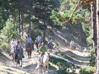 Salida conjunta a caballo