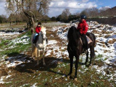 Horsback riding tour in Mallorca, 2.5 hours