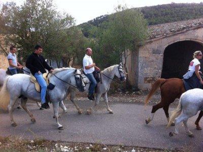Ruta caballo Mallorca con barbacoa y show ecuestre