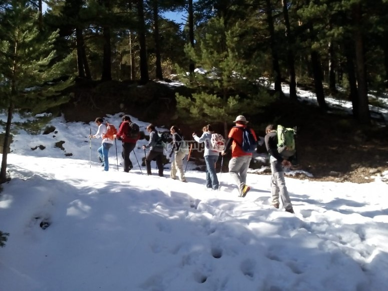 Paseo por la nieve de Sierra Nevada