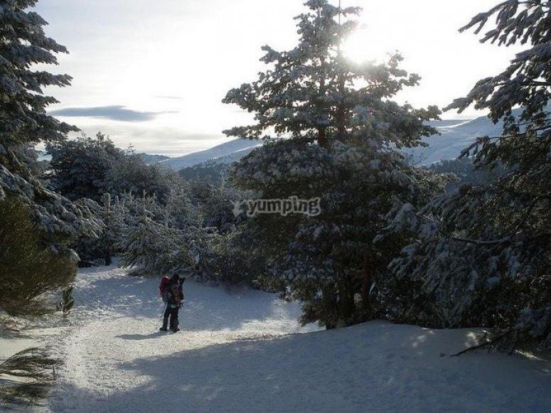 disfrutando de un recorrido con raquetas de nieve