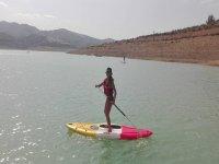 桨冲浪在平静的水域中冲浪