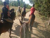 Grupo de amigos en ruta a caballo