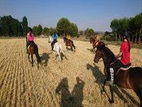 Atravesando los campos de Castilla a caballo